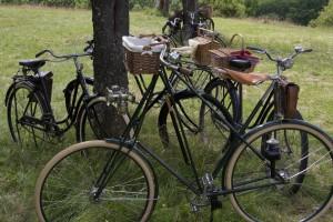 34 - Das Pedersenrad ist anders und das weiss es auch